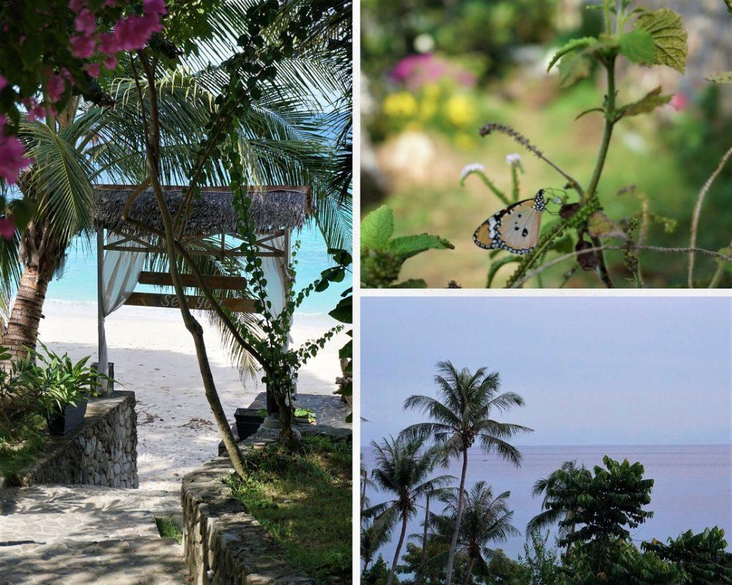 casa nemo pulau weh