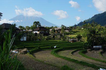Wonen in Indonesie